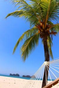 ハンモックから見る青い空
