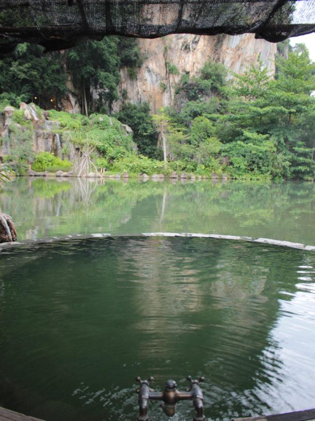 池の前の温泉