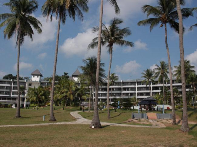 ヤシの木とホテル